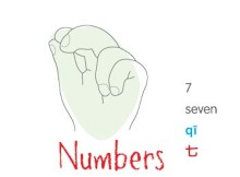 numbers 7