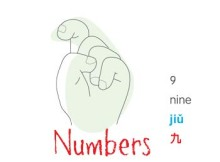 chinese number 9