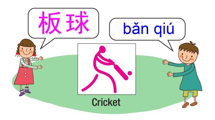 Learn about cricket in Chinese